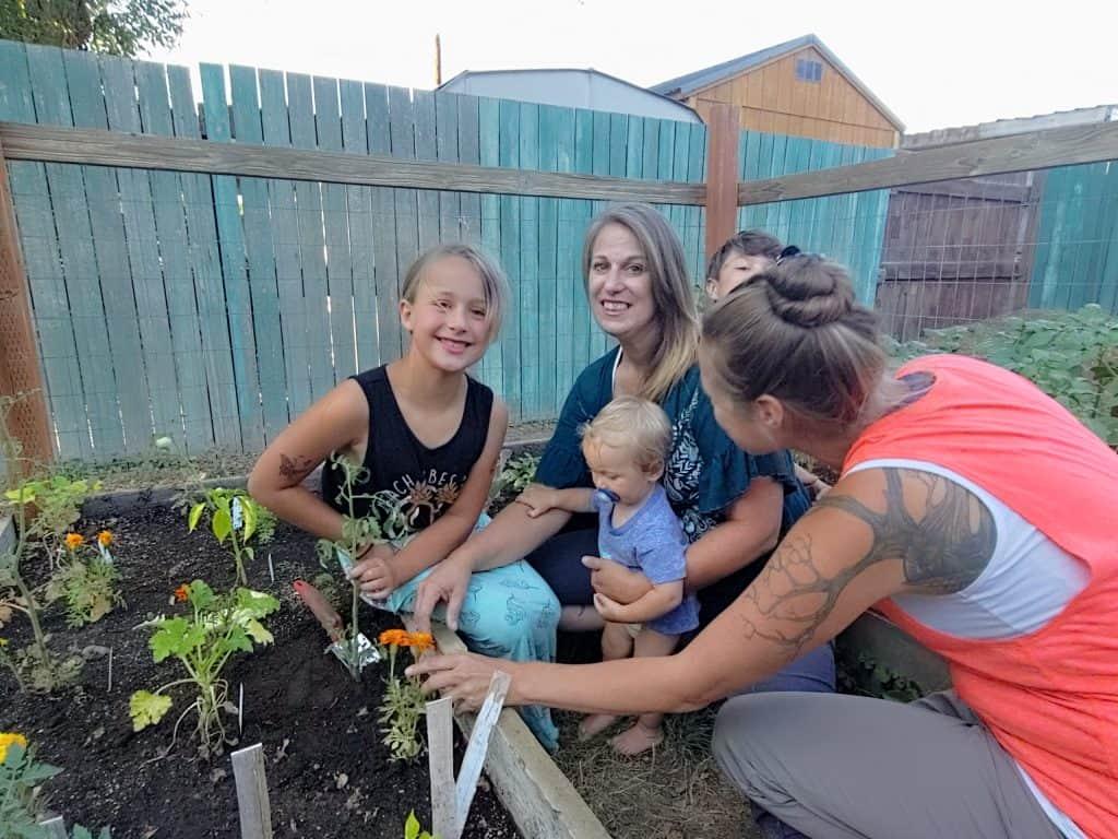 Lettuce Grown jail gardening